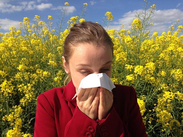 rýma z alergie